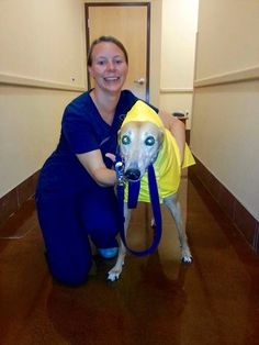 This is Dakota after her visit with Internal Medicine she stopped to pose with Sumor, VMC technician for a rain coat picture!