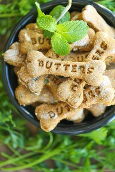 Pumpkin Apple Doggie Mint Treats - Freshen your dog& breath with these homemade dog treats. It& easy, healthy and cheap. It& a win-win! Pumpkin Dog Treats, Diy Dog Treats, Healthy Dog Treats, Diy Pumpkin, Puppy Treats, Pumpkin Puree, Puppy Food, Healthy Snacks, Dog Biscuit Recipes