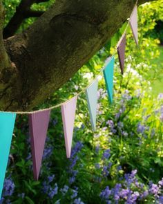 Wooden Bunting.