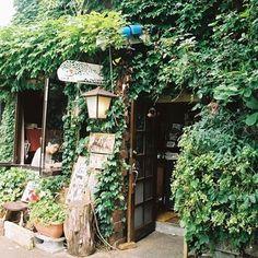 盛岡市中心部を流れる中津川。そのほとりにひっそりと佇む老舗カフェ「ふかくさ」。つたの絡まった外観が、隠れ家感を演出しています。 Greenhouse Cafe, Small Coffee Shop, Japanese Coffee Shop, Cafe Japan, Farm Cafe, Green Cafe, Cozy Cafe, Cafe Shop, Garden Shop