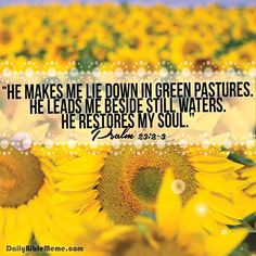"Psalm 23:2-3 ""He makes me lie down in green pastures. He leads me beside still waters. He restores my soul"""