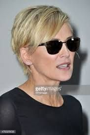 Image result for sharon stone 2015