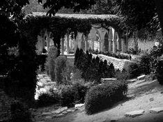 Photo by Elisabeta Vlad Romania, Travel Photography, Urban, Black And White, Landscape, Architecture, Awesome, Nature, Plants