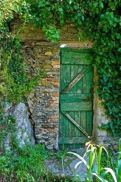 Great and wonderful things grow behind a garden door.