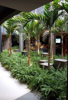 Most up-to-date Pics Tropical Garden interior Style It's no wonder why many pe. - Most up-to-date Pics Tropical Garden interior Style It's no wonder why many people want to have h - Small Tropical Gardens, Tropical Garden Design, Tropical Backyard, Tropical Landscaping, Garden Landscape Design, Front Yard Landscaping, Tropical Plants, Indoor Garden, Outdoor Gardens
