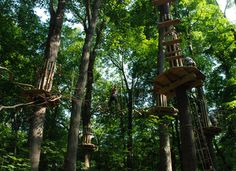 Go Ape Rope Course at Eagle Creek in Indiana.... Definitely want to try this!