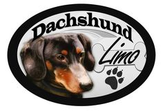 Dachshund 'Limo' Oval Dog Magnet v2 for Cars and such * See this awesome image  : Dog Memorials