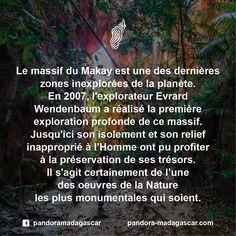 Du jamais vu ! #Makay #TrésorInsolite #Madagascar https://www.naturevolution.org/ou-agissons-nous/afrique/le-makay/