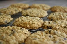 Low Calorie Oatmeal Chocolate Chip Cookies : I substituted the flour for whole wheat flour, added 1 tablespoon of chia seeds and then 4 tablespoons of applesauce (dough was a little dry without the applesauce). Delicious!!
