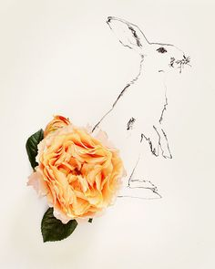 rabbit no 0036 by kariherer on Etsy, $30.00