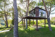 15 Outrageously Cool Treehouses That Will Make You Feel Like A Kid Again - blessings.com
