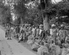 Legervoorlichtingsdienst Soerabaja (Landarbeider die te voet rijstoogst vervoeren staan langs de kant van de weg. Bij hen staan gewapende Indonesische militairen van het, militie of TRI) februari 1947 (Fotocollectie Nationaal Archief)