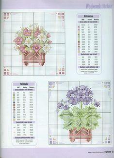 Flower Pots 2/3