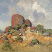 Theys, Conrad | Kamieskroon Brighton College, South Africa Art, National Art Museum, South African Artists, Art Society, Art Studies, Art School, Landscape Paintings