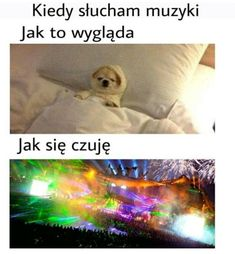 That's True Memes Wtf Funny, Funny Cute, Funny Images, Funny Pictures, Polish Memes, Funny Mems, Mood Songs, Dead Memes, True Memes