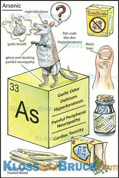 arsenic toxicology essay Toxicology and exposure guidelines  dose-response relationship is a fundamental concept in toxicology and  human data indicates that arsenic is.