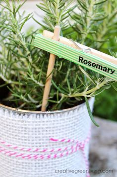 These are so cute and easy to make! How to Make Plant Markers from Clothespins & Washi Tape on Creative Green Living