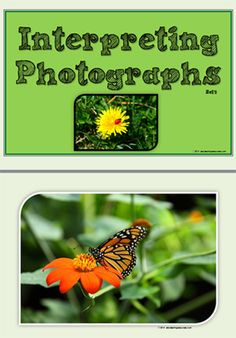 Interpreting Photographs Set 3 [  collection of nine photographs with insects as subjects. Also included is a set of questions to prompt student interpretation of the photograph. This response could be given orally or in written form. This resource creates an instant wall display. The photographs may also be used as writing prompts.