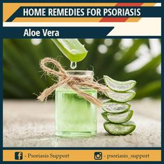 Aloe vera has long been used as an herbal medicine. But, have you ever used aloe vera for diabetes? Read on this article to know the 7 reasons to use aloe vera Aloe Vera For Skin, Aloe Vera Hair Mask, Diy Shampoo, Organic Shampoo, Plantar Aloe Vera, Home Remedies, Natural Remedies, Holistic Remedies, Herbal Remedies