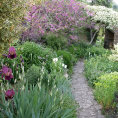"""Margery Fish's iconic cottage garden at East Lambrook Manor. """"In the development of gardening in the second half of the twentieth century no garden has yet had greater effect."""" John Sales, National Trust"""