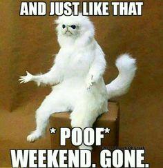 #WeekendUpdate I need a longer #weekend! No more #poofs! #enjoylife