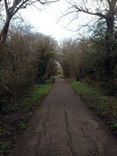 Cuckoo Trail Horam Sussex