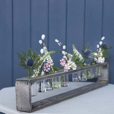 Perfect as a table centerpiece or in a window sill.  Above the kitchen sink?