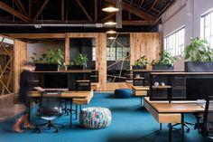 escritório, carpete, azul, madeira, preto, metal, branco, colorido