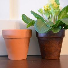 Today I thought I'd share a quick tip on how to get an aged look to your terra cotta pots using dark furniture wax.
