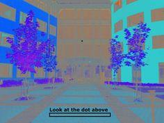 Osservate il punto sopra. Invece di vederla in bianco e nero, il vostro cervello la riempie dei colori che pensa dovrebbe vedere, basandosi sulla foto in arancio e blu. Ora chiudete velocemente gli occhi e la vedrete in bianco e nero.