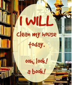 I WILL clean my house today. Ooh, look! a book!