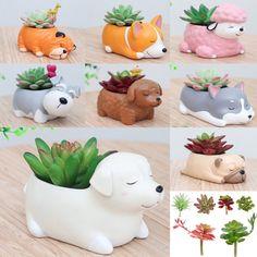 Ceramic Flowerpot Little Animals Dog Planter Cute Green Bonsai Succulent Plant Q plants Ceramic Flower Pots, Ceramic Planters, Planter Pots, Cement Crafts, Clay Crafts, Succulent Pots, Planting Succulents, Bonsai, Chia Pet
