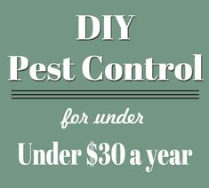 How to easily do your own Pest Control for Under $30 a Year!