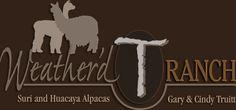 Visit our blog & website for sales, news and events: http://wtralpacas.blogspot.com/ http://www.wtralpacas.com/