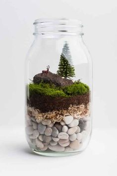 The terrarium is one of the modern flower pots that are now popular because it gives the impression of fresh natural plants in a unique and beautiful home. The terrarium is also an alternative to p… Mini Terrarium, Mason Jar Terrarium, Terrarium Plants, Succulent Terrarium, Mason Jar Diy, Succulents Garden, Garden Planters, Fairy Terrarium, Garden Beds