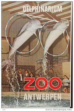 zoo antwerpen poster - Google Search