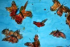 Monarch Butterflies on Blue Limited Edition Print Cross Section 1 by Angela Moulton
