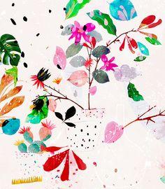cosima, by dansedelune. botanical illustration.