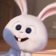 Cute Bunny Cartoon, Happy Cartoon, Cartoon Pics, Funny Phone Wallpaper, Disney Phone Wallpaper, Baby Animals Pictures, Cute Animals, Snowball Rabbit, Rabbit Wallpaper