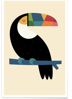 Poster kunst - Poster 50 x 70 cm - Rainbow Toucan - door Andy Westface Art Mural, Toucan, Kunst Poster, Poster Poster, Cute Whales, Animal Art Prints, Affordable Wall Art, Guache, Abstract Art