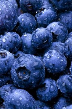 Blueberries #coloroftheweek #navy #littlebitofpurple