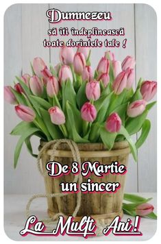 8 Martie, Spring Time, Birthday, Plants, Flowers, Birthdays, Plant, Dirt Bike Birthday, Planets