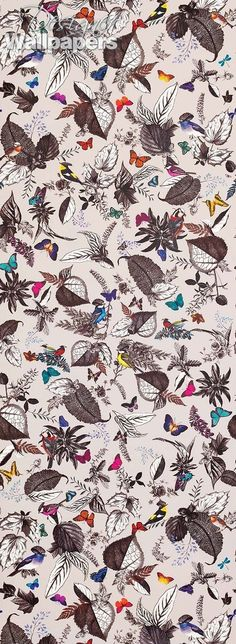 Bird Song wallpaper is an idyllic design with flowers, butterflies, and birds. A monochrome background of hand-drawn leaves creates a botanical effect reminiscent of nature journals.  Bright and vibrant butterflies and birds conjure a feeling of exploration and adventure.  This design is suitable for a variety of uses - it will look wonderful on all four walls or can be used to stunning effect for a feature wall.  The design is created with an extra long repeat - truly sumptuous.