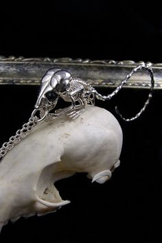 bone ネックレス コミミトビネズミ