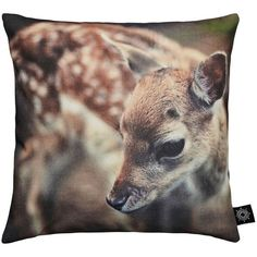 By Nord Baby Deer Cushion (£34) ❤ liked on Polyvore featuring home, home decor, throw pillows, pillow, cushions, brown, brown throw pillows, brown accent pillows, deer home decor and deer throw pillows
