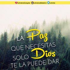 """""""La #paz os dejo, mi paz os doy; yo no os la doy como el mundo la da. No se turbe vuestro #corazón ni tenga miedo.""""  (Juan 14:27) -  Síguenos por nuestras redes sociales:   http://www.universal.org.mx  https://www.facebook.com/IglesiaUniversalMexico/ http://www.twitter.com/UnivMx http://www.instagram.com/UniversalMexico"""