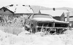 Dodge Charger in Montana.