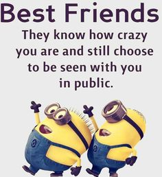 。◕‿◕。 Minions Crazy Best Friends. See my Despicable Me Minions pins https://www.pinterest.com/search/my_pins/?q=minions. Love these guys