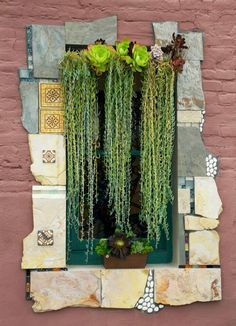 Lovely curtain of fishhook sedums designed by Peter at the Succulent Cafe in Oceanside, CA.