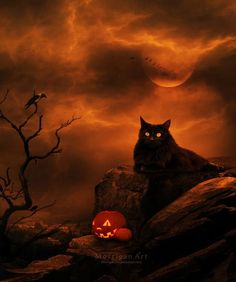 images about Samhain - Halloween - All Hallows Eve - Pagan . Retro Halloween, Halloween Chat Noir, Halloween Prints, Halloween Pictures, Holidays Halloween, Spooky Halloween, Happy Halloween, Halloween Decorations, Halloween Night